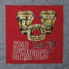 Hiland Ohio Girls State Champs T Shirt quilt panel