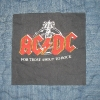 AC/DC T Shirt Memory quilt panel