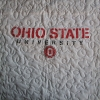 THE Ohio State University T shirt quilt panel